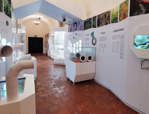 Wystawa w Lwówku Śląskim – od koncepcji do realizacji